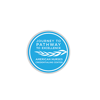 Journey to Pathway Lapel Pin
