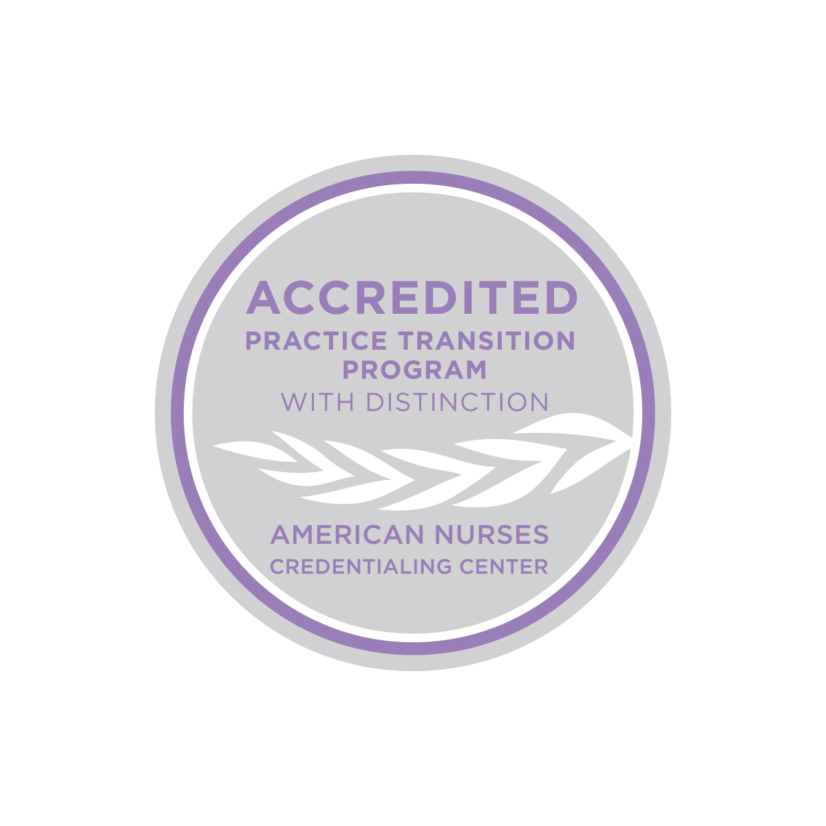 Accredited Practice Transition Program with Distinction lapel pin